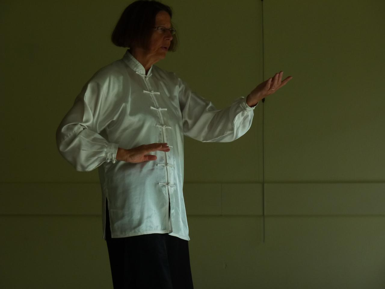 STAGE QI GONG 3 SEVRES ANXAUMONT 2014