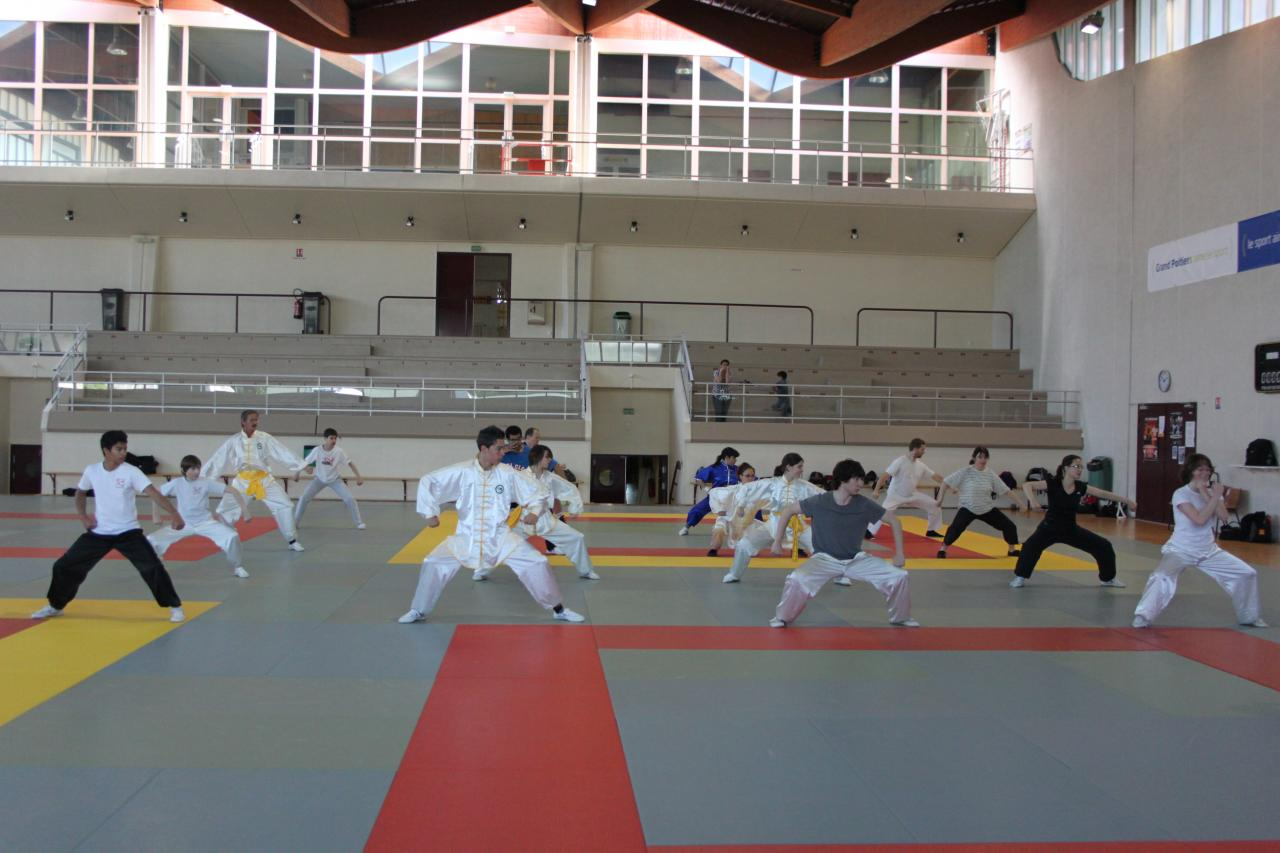 Wushu de base animé par Roger Itier 2013